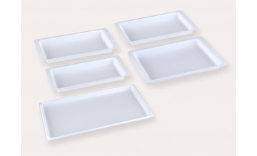 NO PATIONNING DISPOSABLE TRAY